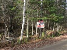 Lot for sale in Montcalm, Laurentides, Chemin du Lac-du-Brochet, 20173041 - Centris