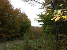 Terrain à vendre à Montcalm, Laurentides, Chemin du Lac-Richer Sud, 16850562 - Centris