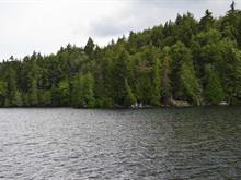 Lot for sale in Wentworth-Nord, Laurentides, Rue  René, 14283345 - Centris