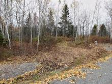 Lot for sale in Saint-Modeste, Bas-Saint-Laurent, 3e Rang, 16501739 - Centris