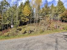 Lot for sale in Lac-Sainte-Marie, Outaouais, Chemin  Lemens, 28011233 - Centris