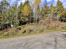 Lot for sale in Lac-Sainte-Marie, Outaouais, Chemin  Lemens, 20469258 - Centris