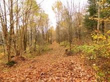 Land for sale in Chute-Saint-Philippe, Laurentides, Chemin  Gouin, 27292136 - Centris