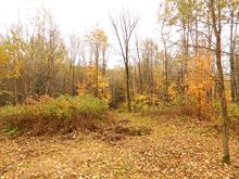 Land for sale in Chute-Saint-Philippe, Laurentides, Chemin  Gouin, 23079847 - Centris