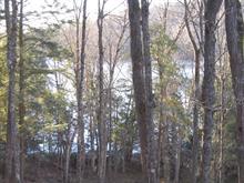 Lot for sale in La Pêche, Outaouais, 58, Chemin du Beaver-Pond, 14738126 - Centris