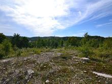 Terrain à vendre à Saint-Faustin/Lac-Carré, Laurentides, Allée du 5e, 9841898 - Centris