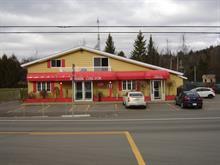 Bâtisse commerciale à vendre à Saint-Alphonse-Rodriguez, Lanaudière, 771, Route  343, 25711357 - Centris