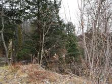 Lot for sale in Gore, Laurentides, Rue du Coteau-des-Érables, 24678791 - Centris