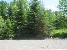 Terrain à vendre à Thetford Mines, Chaudière-Appalaches, 1136, Rue  Legendre, 22704414 - Centris