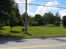 Lot for sale in Saint-Philémon, Chaudière-Appalaches, 1700, Rue  Principale, 20657695 - Centris