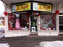 Commerce à vendre à Saint-Léonard (Montréal), Montréal (Île), 5822, Rue  Jean-Talon Est, 23751266 - Centris