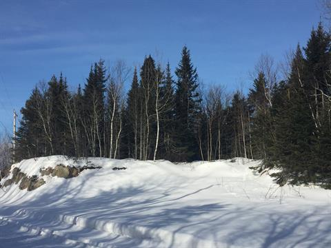 Lot for sale in Saint-Anaclet-de-Lessard, Bas-Saint-Laurent, 745C, 3e Rang Ouest, 20855856 - Centris