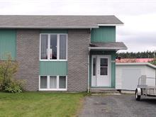 Maison à vendre à Alma, Saguenay/Lac-Saint-Jean, 107, Rue des Quenouilles, 25603422 - Centris