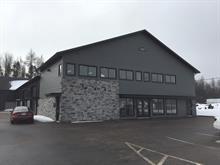 Bâtisse commerciale à vendre à Les Chutes-de-la-Chaudière-Ouest (Lévis), Chaudière-Appalaches, 1480, Rue  Thomas-Powers, 28271044 - Centris