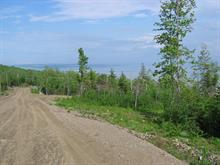 Terrain à vendre à Petite-Rivière-Saint-François, Capitale-Nationale, Chemin de la Vieille-Rivière, 12268932 - Centris