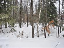 Lot for sale in Saint-Lin/Laurentides, Lanaudière, Chemin  San-Air, 11586947 - Centris
