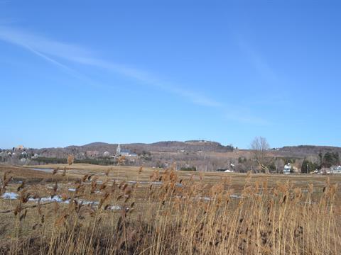 Terrain à vendre à Saint-Christophe-d'Arthabaska, Centre-du-Québec, 441A, Avenue  Pie-X, 12035380 - Centris