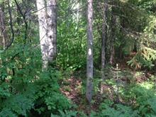 Lot for sale in Saint-Nazaire, Saguenay/Lac-Saint-Jean, 24, Chemin  Carreau-Gervais, 23449223 - Centris