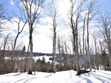 Lot for sale in Wentworth-Nord, Laurentides, 9999, Rue  Flavio, 20623757 - Centris