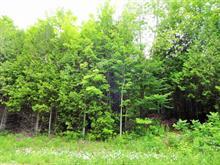 Terrain à vendre à La Pêche, Outaouais, 48, Chemin  Davidson, 22851864 - Centris