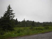 Terre à vendre à Percé, Gaspésie/Îles-de-la-Madeleine, Chemin de Val-d'Espoir, 20675090 - Centris