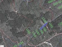 Terre à vendre à Percé, Gaspésie/Îles-de-la-Madeleine, 2, Chemin de Val-d'Espoir, 18650661 - Centris