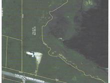 Terrain à vendre à Les Îles-de-la-Madeleine, Gaspésie/Îles-de-la-Madeleine, Chemin  Poirier, 17007995 - Centris