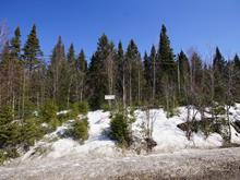Lot for sale in Mille-Isles, Laurentides, Route  329, 13643078 - Centris