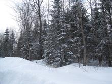 Lot for sale in Saint-Tite, Mauricie, Chemin des Petites-Forges, 22528911 - Centris