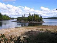 Lot for sale in Alma, Saguenay/Lac-Saint-Jean, Chemin du Faubourg-des-Jardins, 19797893 - Centris