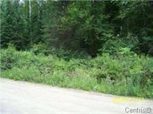 Terrain à vendre à Bouchette, Outaouais, 175, Montée du Lac-des-Trente-et-Un-Milles, 22700536 - Centris