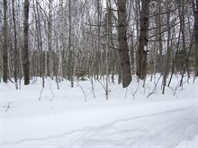 Lot for sale in Mont-Tremblant, Laurentides, Chemin  Ernie-McCulloch, 18326968 - Centris
