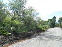 Terrain à vendre à Saint-Jean-Port-Joli, Chaudière-Appalaches, Montée  Victor-Duval, 27322085 - Centris