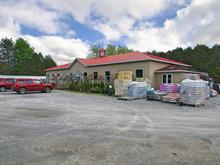 Bâtisse commerciale à vendre à Ayer's Cliff, Estrie, 85 - 95, Route  141 Sud, 23200355 - Centris