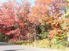 Lot for sale in Saint-Alphonse-Rodriguez, Lanaudière, Rue  Champagne, 18665809 - Centris