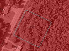 Lot for sale in Racine, Estrie, 2, Route  243, 21455713 - Centris