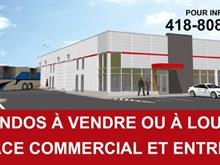 Commercial building for rent in Desjardins (Lévis), Chaudière-Appalaches, 687, Route du Président-Kennedy, 17599322 - Centris