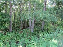 Lot for sale in Estérel, Laurentides, Avenue de Touraine, 17889495 - Centris