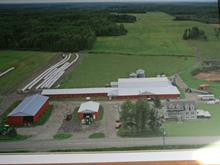 Farm for sale in Saint-Félix-de-Dalquier, Abitibi-Témiscamingue, 145, 7e-et-8e Rang Ouest, 23438718 - Centris