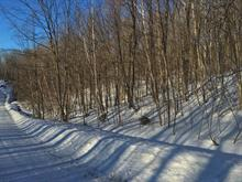 Lot for sale in Bolton-Est, Estrie, 41, Rue  Nord, 13872659 - Centris