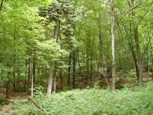 Terrain à vendre à Saint-Faustin/Lac-Carré, Laurentides, 03, Chemin  Wilfrid, 21049617 - Centris