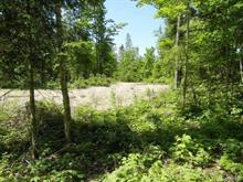 Lot for sale in Blue Sea, Outaouais, 31, Chemin  Lafontaine, 19109298 - Centris