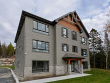 Income properties for sale in Sainte-Adèle, Laurentides, 2315, boulevard de Sainte-Adèle, 16738956 - Centris