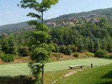 Lot for sale in Mont-Tremblant, Laurentides, 259, Chemin des Cerfs, 8595976 - Centris