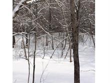 Terrain à vendre à Notre-Dame-de-la-Salette, Outaouais, Route  309, 20872566 - Centris