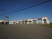 Commercial building for sale in Fleurimont (Sherbrooke), Estrie, 1175 - 1201, 12e Avenue Nord, 18177864 - Centris