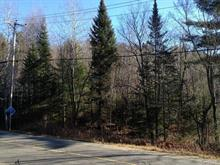 Lot for sale in Chertsey, Lanaudière, Chemin du Lac-Paré, 24527481 - Centris