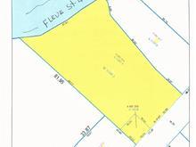 Lot for sale in Saint-Roch-des-Aulnaies, Chaudière-Appalaches, 830, Route de la Seigneurie, 20382220 - Centris