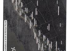 Terre à vendre à Rivière-Ouelle, Bas-Saint-Laurent, Chemin de la Cinquième-Grève Ouest, 9974993 - Centris