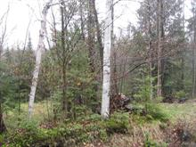 Lot for sale in Dudswell, Estrie, 1, Chemin  Laflamme, 10397055 - Centris